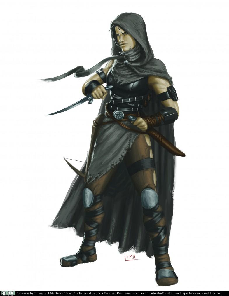Assassin cmyk - Enmanuel Martinez CC.by